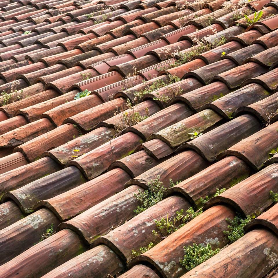 katuse pesu ja katuse survepesu